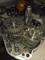 PROBLEMAS Cerrar motor mc75 Img_2031