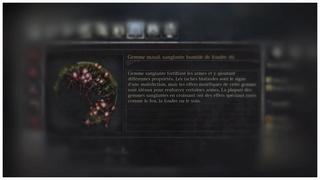 Les différents types de gemmes et leurs effets Gemme_13