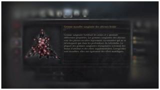 Les différents types de gemmes et leurs effets Gemme_29