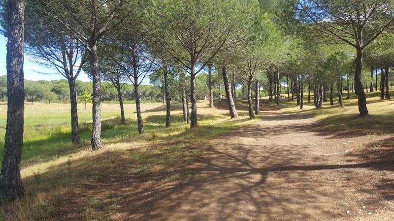 SÁBADO  06-05-17 Villarrasa- Embalse Walabonso- Toboganes Img-2032