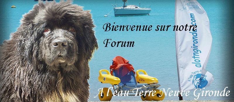 A l'eau Terre-Neuve Gironde