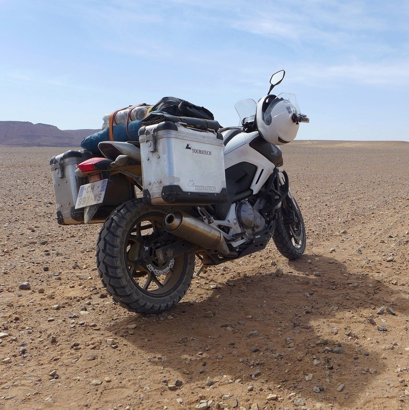 Essai Honda NC 700 X / Chameau transgénique  Img_0015