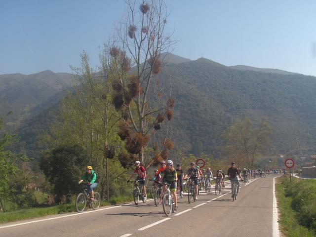 Biciliébana fiesta de la bicicleta 12-4-17 P1010017