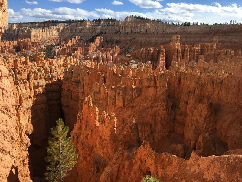 Viaje a EEUU (California, Nevada, Arizona, Utah) - Página 2 411