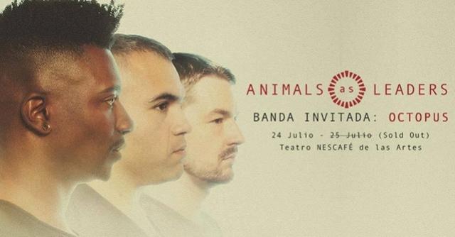 Animals as Leaders - 24 y 25 de Julio 2017 (Santiago) Animal10