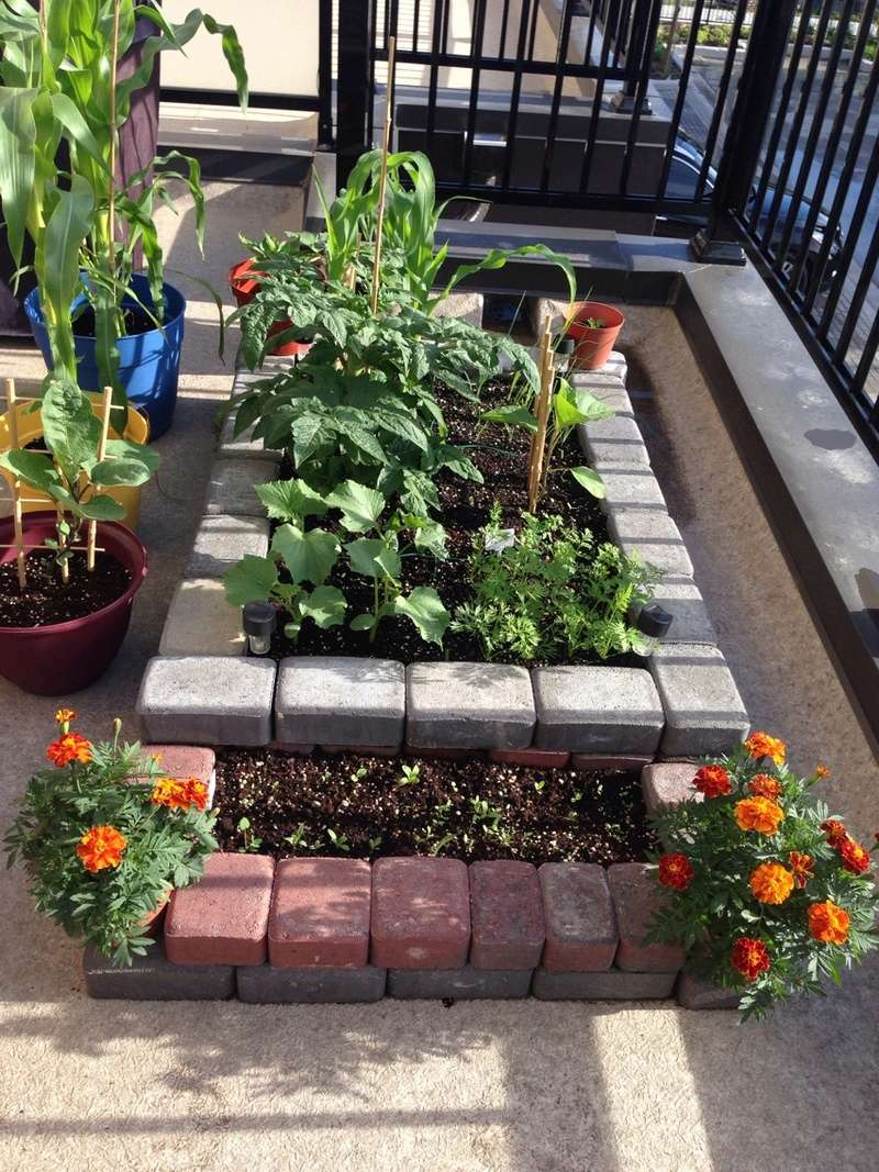 Terrace Garden in Ontario, Canada Img_6141