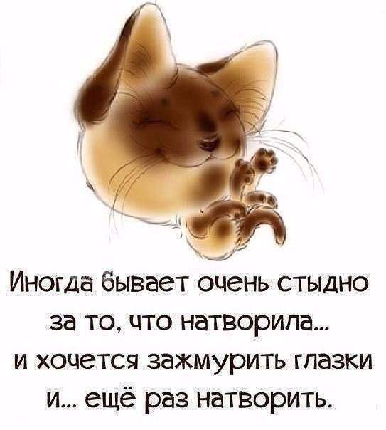 О НАС, КРАСИВЫХ! Image_14