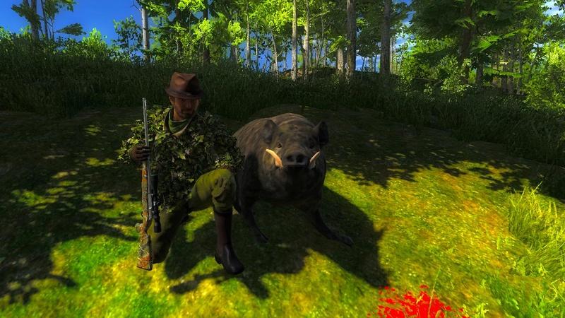 """petit porc sauvage de 1014.151 """"team the black wolf """"  2017-017"""