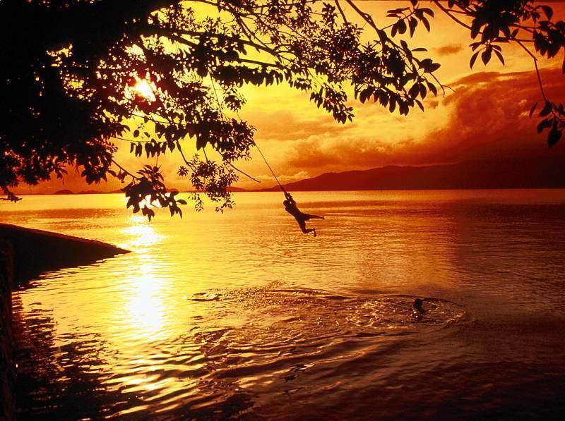 صور من الطبيعة 1 314