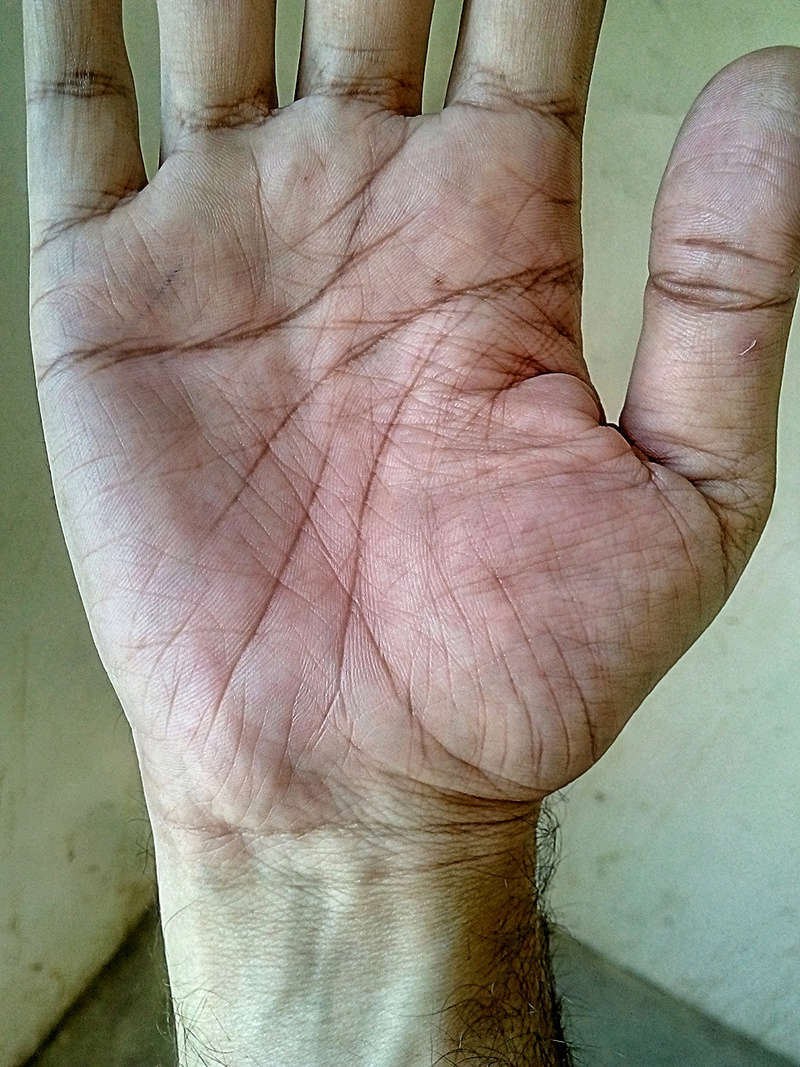 Can someone plz read my palm  Beauty12