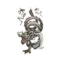 3D Татуировки (временные) - Дракон - 15 руб. Htb1od10