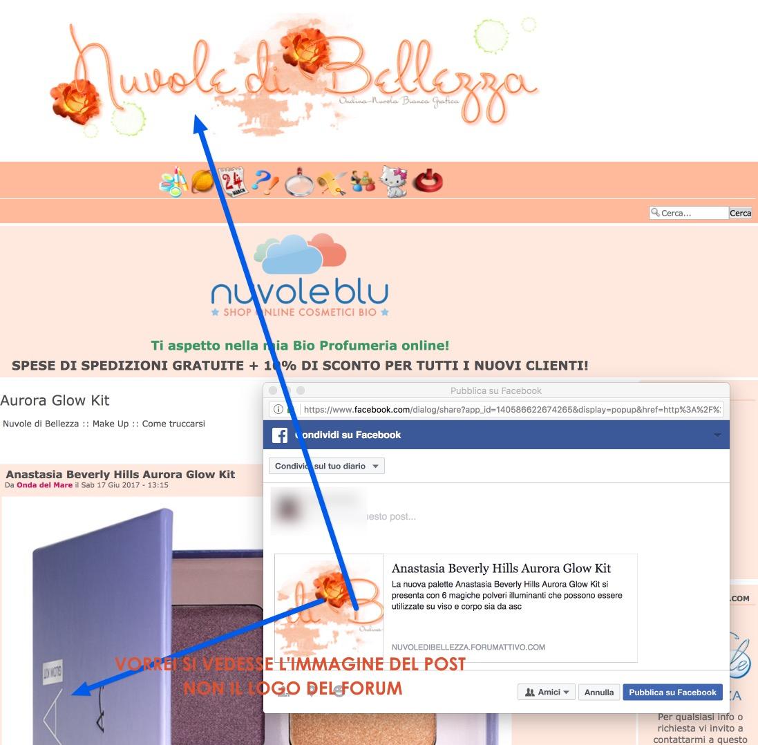 Facebook, problema condivisione foto Voila_13