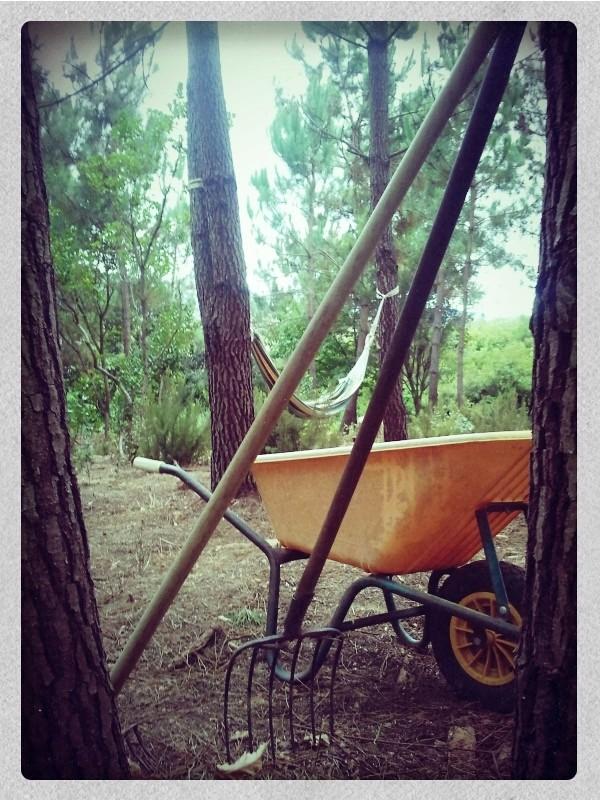 Wild Camping Alcobaça-Portugal 2015-010