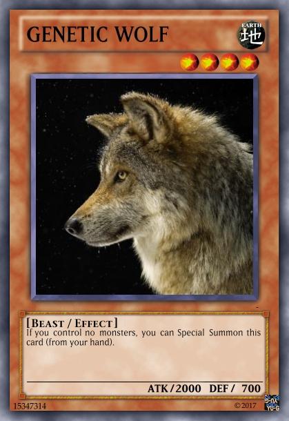 οι δικες μου καρτες - Σελίδα 3 V10
