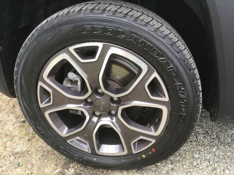 Michelin LTX Force no Renegade Pneu10