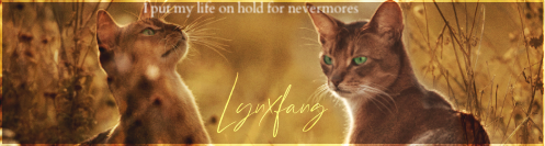[WindClan vs RiverClan] Avenge him - Pagina 4 Scherm17