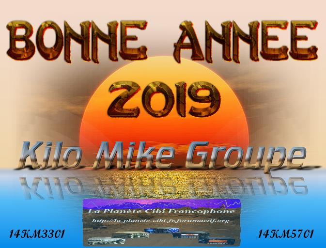 Bonne année 2019 - Meilleurs Vœux - Bonne santé à tous Bonne_10