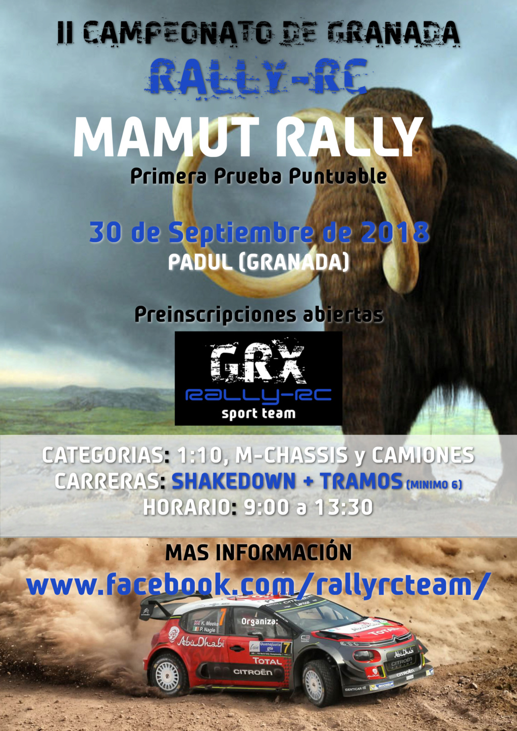 RALLY-RC 1/10 - Página 2 Cartel10
