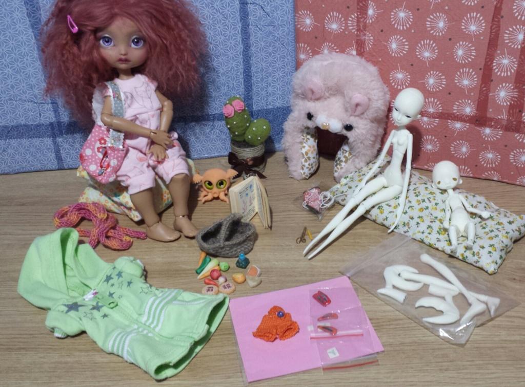 Salon Bella Doll à Bailleul (Nord) samedi 18 mai 2019 20190513