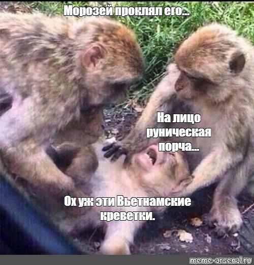 Мемы от Кота Бегемота и от форумчан - Страница 2 83e0e610