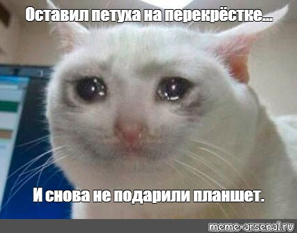 Мемы от Кота Бегемота и от форумчан - Страница 2 Af9ac510