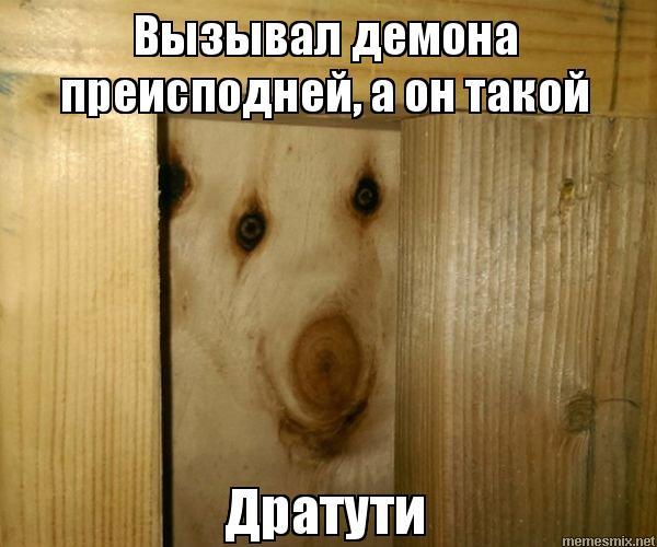 Мемы - Страница 2 6010