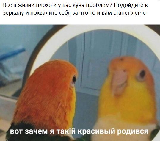 Мемы - Страница 3 7610