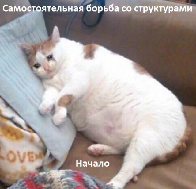 Мемы - Страница 3 8010