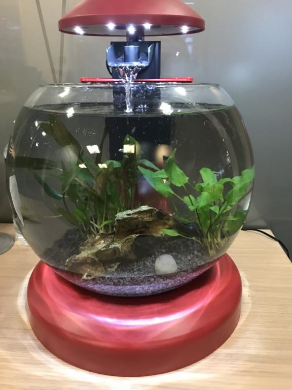 Aquarium boule cascade de Tetra (6,8L) 61798c10