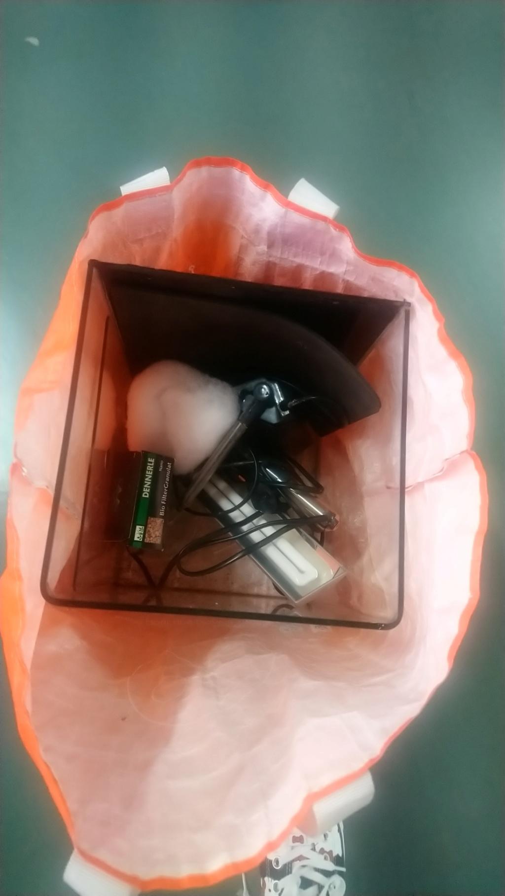 avis Dennerlé Aquarium Nano Cube Basic, 20L - LED, M C642a910