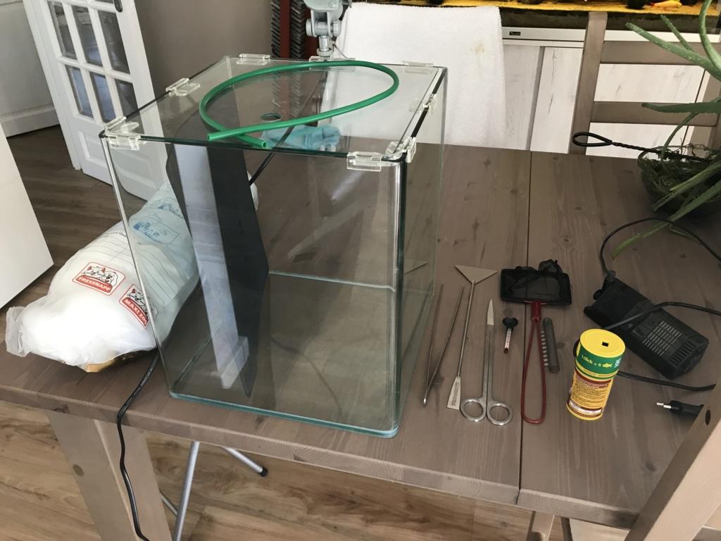 Mon 4ème aquarium 30L en bac hôpital/nurserie (pour commencer ;-P) Img_2010
