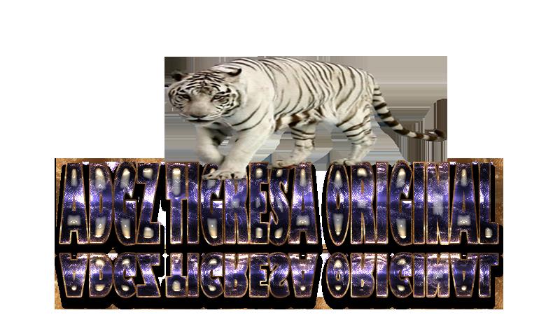 TORNEIOS TIGRESA THE BEST  0611