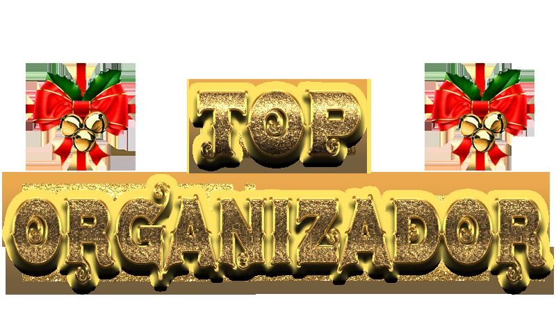 TOP ORGANIZADOR DEZEMBRO A1210
