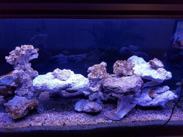 Projet aquarium aqualantis fusion 120x50x70 - Page 2 1210