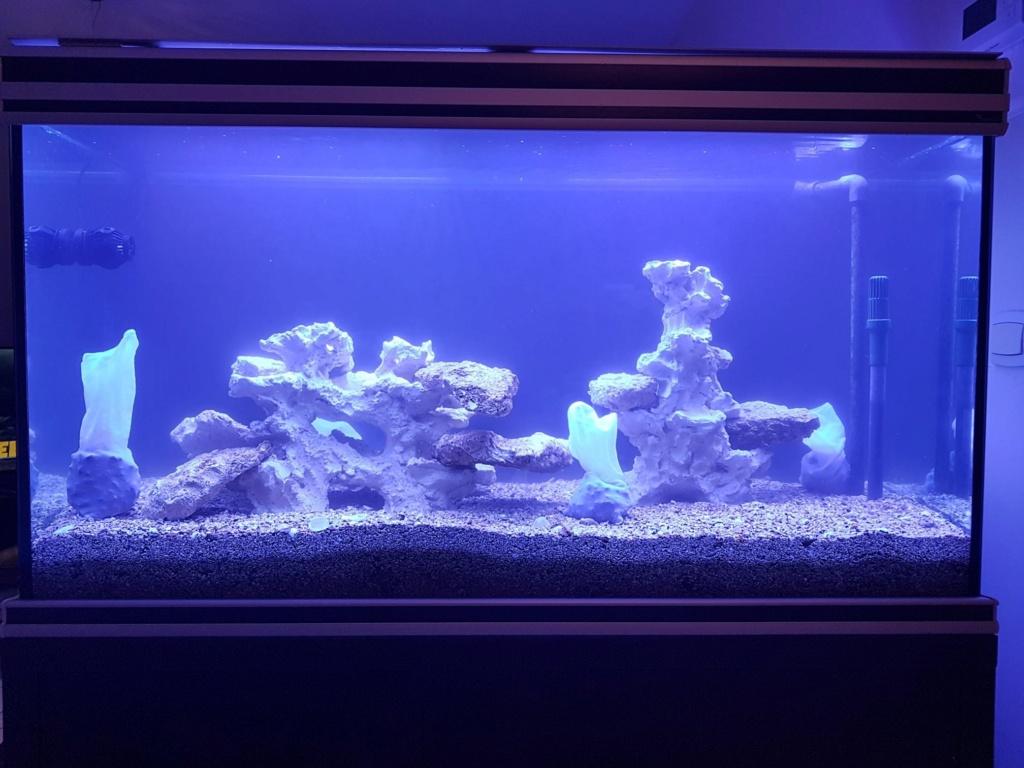 Projet aquarium aqualantis fusion 120x50x70 A10