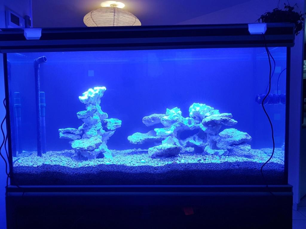Projet aquarium aqualantis fusion 120x50x70 B10