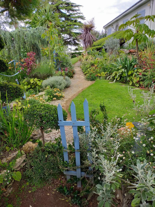 Michou - un jardin de curiosités, botanique, le moulin, l'oasis de Michel  (44) - Page 8 Img20102