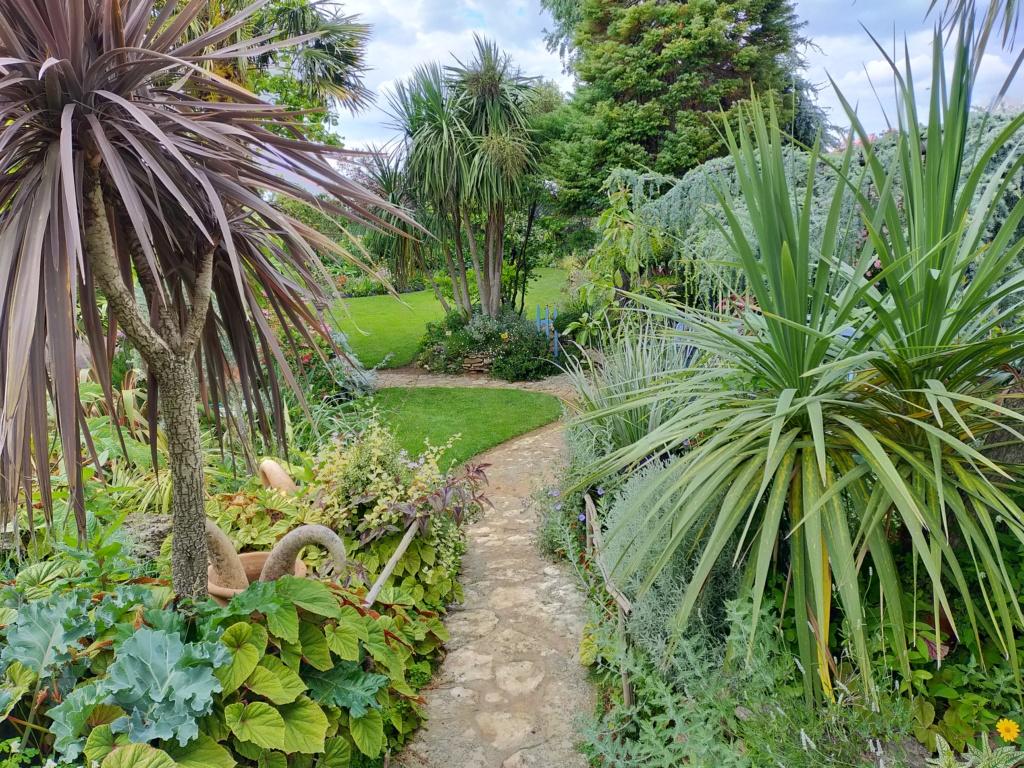 Michou - un jardin de curiosités, botanique - L'oasis de Michel  (44) - Page 9 Img20111
