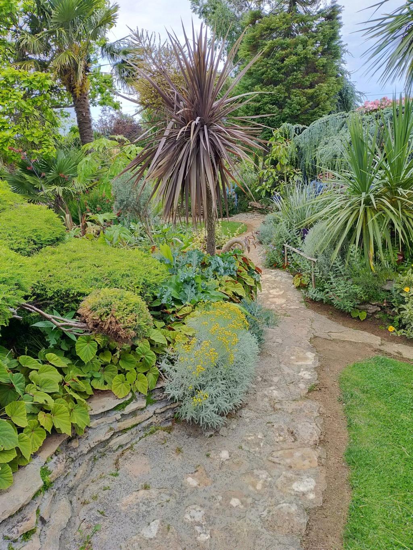 Michou - un jardin de curiosités, botanique - L'oasis de Michel  (44) - Page 9 Img20112
