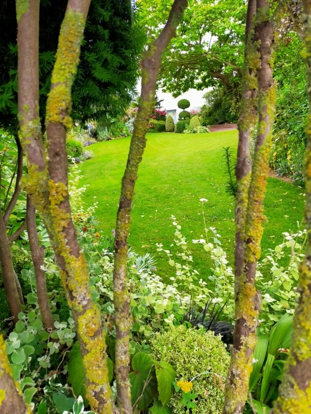 Michou - un jardin de curiosités, botanique - L'oasis de Michel  (44) - Page 9 Img20160