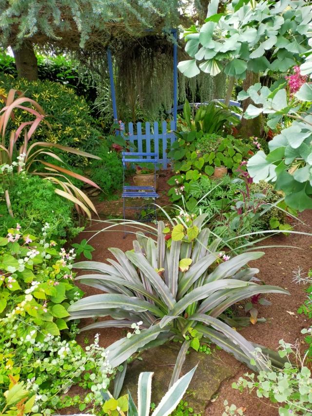 Michou - un jardin de curiosités, botanique - L'oasis de Michel  (44) - Page 9 Img20168