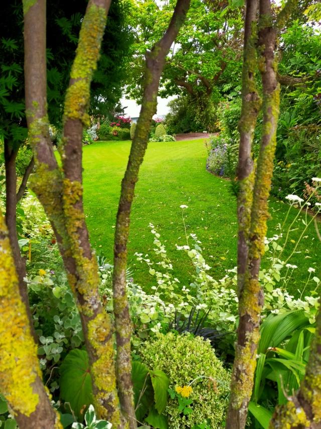 Michou - un jardin de curiosités, botanique - L'oasis de Michel  (44) - Page 9 Img20180