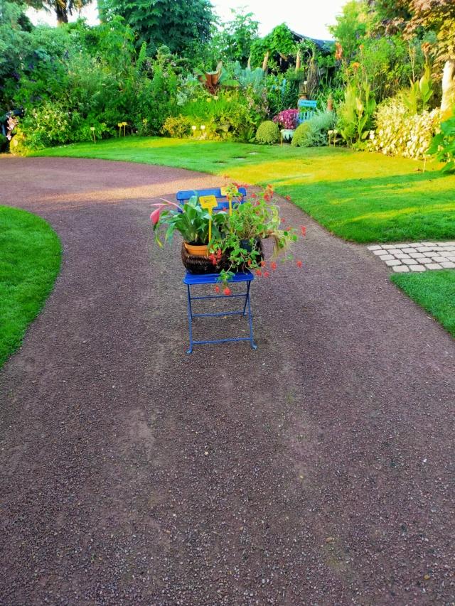 Michou - un jardin de curiosités, botanique - L'oasis de Michel  (44) - Page 9 Img20199