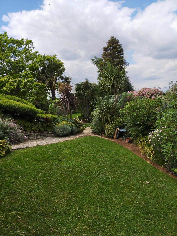 Michou - un jardin de curiosités, botanique, le moulin, l'oasis de Michel  (44) - Page 8 Img20244