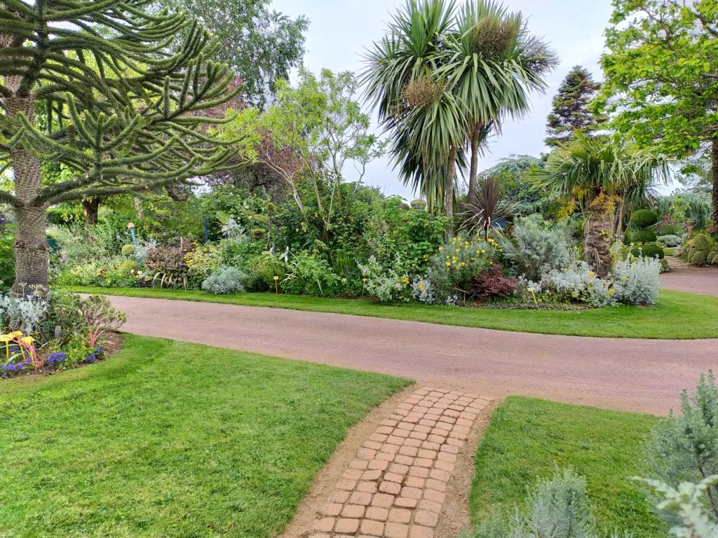 Michou - un jardin de curiosités, botanique, le moulin, l'oasis de Michel  (44) - Page 8 Img20259