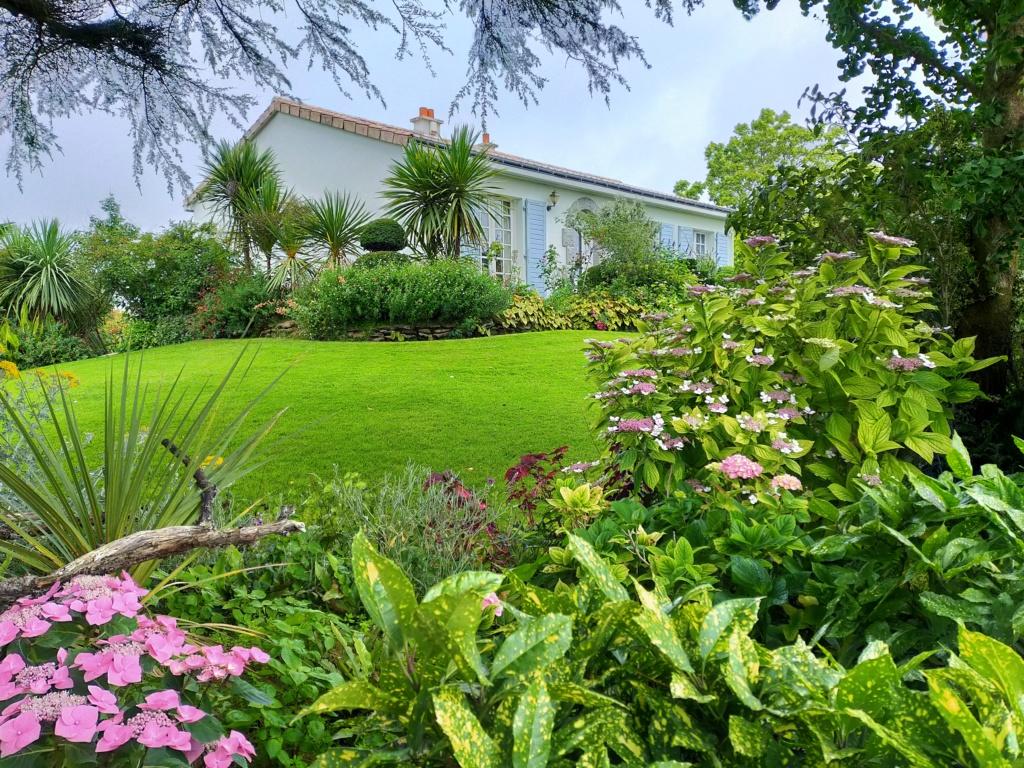Michou - un jardin de curiosités, botanique, le moulin, l'oasis de Michel  (44) - Page 8 Img20262