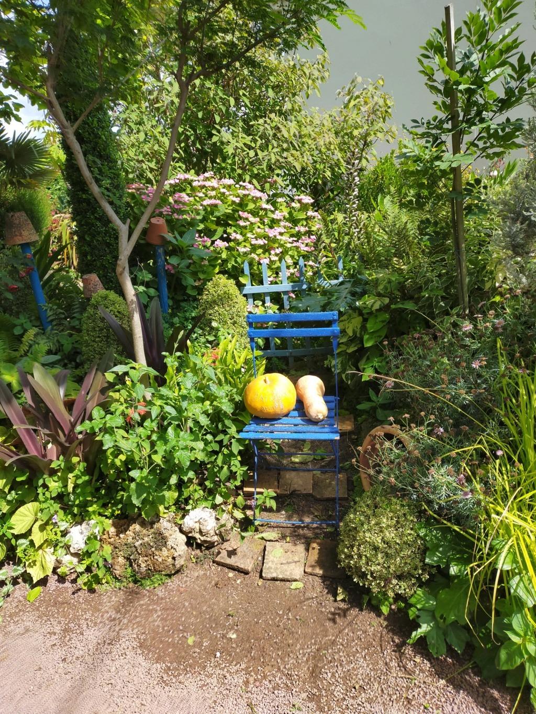 Michou - un jardin de curiosités, botanique, le moulin, l'oasis de Michel  (44) - Page 8 Img20276