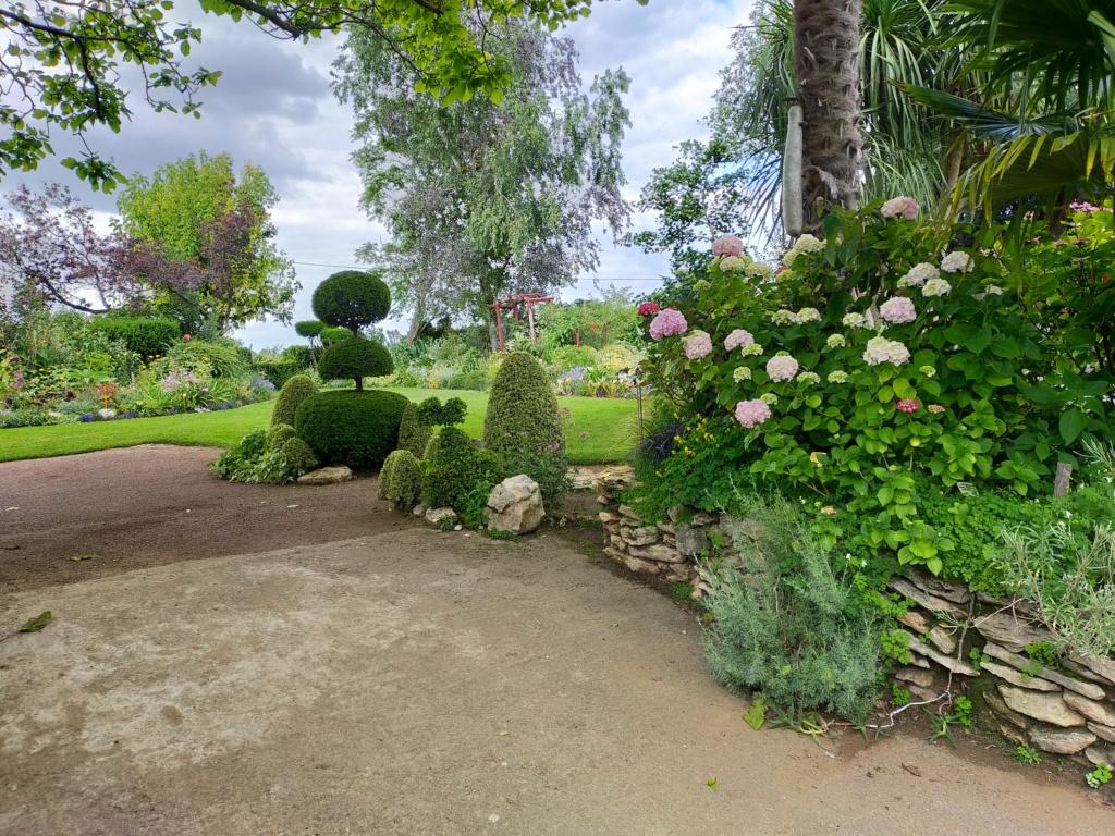 Niwaki, la taille en nuage, l'art topiaire, dans le jardin de Michel Img20277