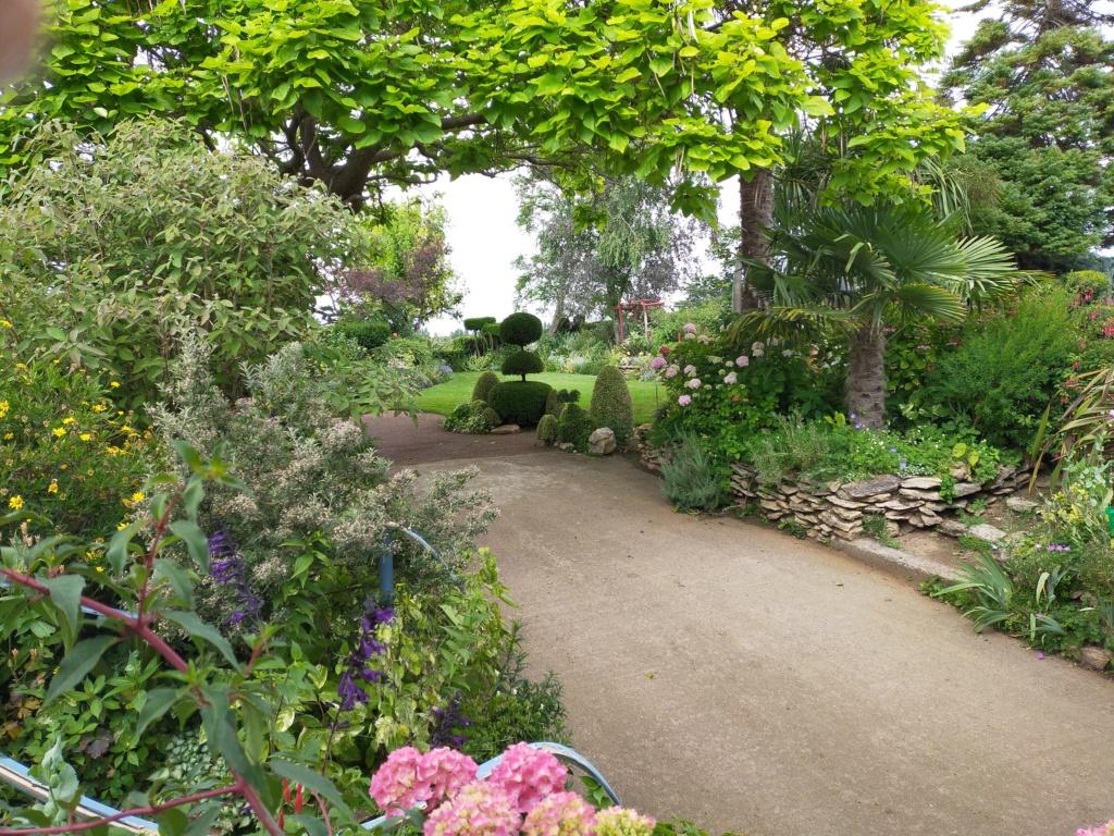 Niwaki, la taille en nuage, l'art topiaire, dans le jardin de Michel Img20278