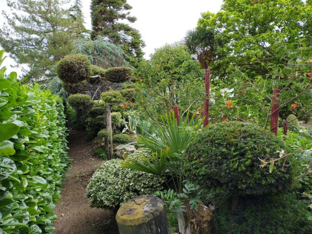 Niwaki, la taille en nuage, l'art topiaire, dans le jardin de Michel Img20285